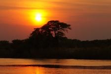 Mori Africa