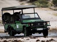 Gifts of The Kalahari Safaris