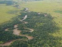 Mara Wetland