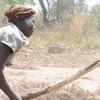 Women Of Pader Pounding Sorhum