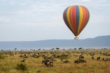 Angama Mara Hot Air Balloon Safari Plains Game