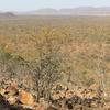 Overlooking Mokolodi Nature Reserve
