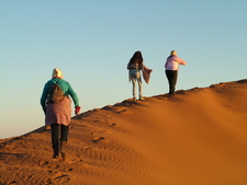 Sand Dune Walk At Sunset 1