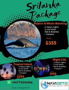 Copy Of Travel Packages Flyer 2