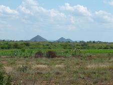 Farming Area Near Filabusi