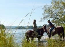 Horse Riding Safari Zht5 Preview