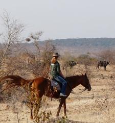 Horse Riding Safari Zht3 Preview
