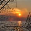 Lake Niassa Reserve