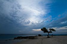 The Beach At Nacala