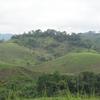 Landscape In Mimongo