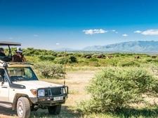 Tanzania Luxury Safari To Lake Manyara Serengeti Ngorongoro Crater