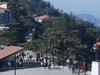 530859 Shimla Pti