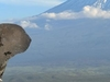 2016 Grand Safari Hero Kenya Amboseli Elephant Mt Kilimanjaro 51221720