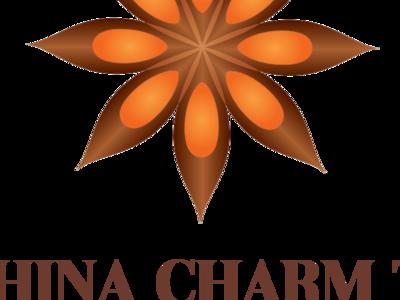 Ict Logo 2019