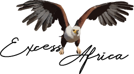 Excess Africa New