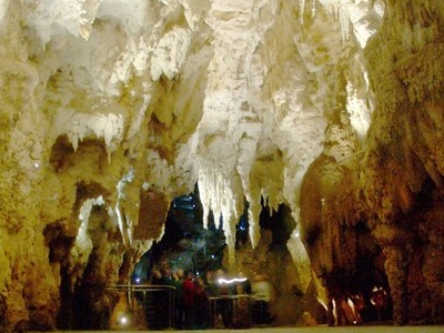The Cathedral In The Waitomo Glowworm Caves