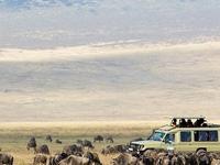 Private Tanzania Lifetime Adventure Safari