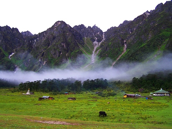 Gangtok Darjeeling Tour Photos