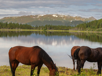 3 Days Sweet Waters Private Ranch Visit