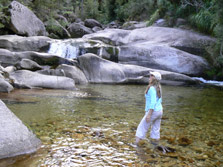 Abel Tasman Coast Side Trips