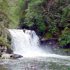 View Of Abrams Falls