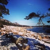 Acadia National Park ME Landscape