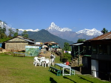 Active Eye Nepal Tours Pvt. Ltd.