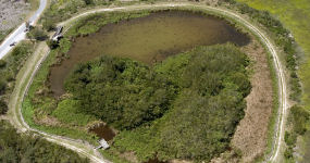 Aerial View Of Eco Pond Trail