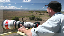Africa Venture Safaris