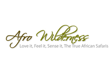 Afro Wilderness DMC