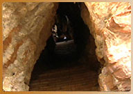 Agastya Cave