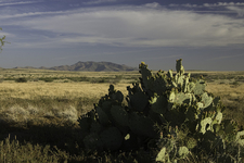 Agua Fria National Monument - Tonto National Forest