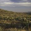 Agua Fria River - Tonto National Forest - Arizona