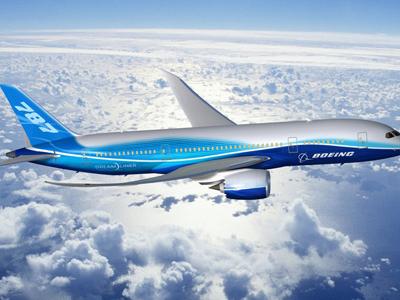 Airplane In Flight1