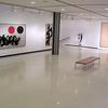 Albright–Knox Art Gallery