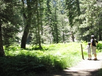 Alder Creek Trail 2W18