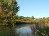 Alewife Brook Reservation