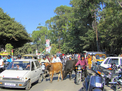 All Types Of Traffic - Rajpur Road