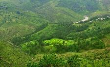 @ Almora In Uttarakhand