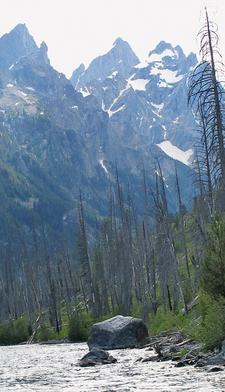 Along Jenny Lake Loop Trail - Grand Tetons - Wyoming - USA