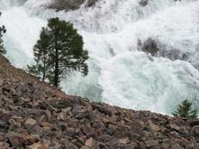 Along Kootenai Lakes Trail - Glacier - Montana - USA