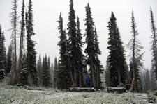 Along Waterton Valley Trail - Glacier - Montana - USA