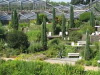 Antiguo Jardín Botánico de Hamburgo