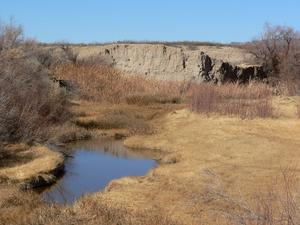 Río Amargosa