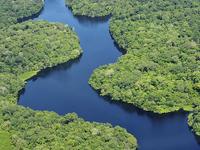 Amazon Rain Forest 4 Days