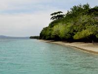 Ambon Ilha