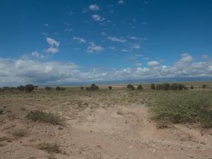 4 Days Amboseli National Park Safari Photos