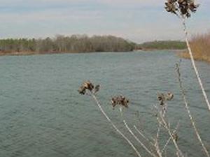 Amelia Lake