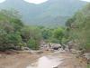 Amirthi Forest