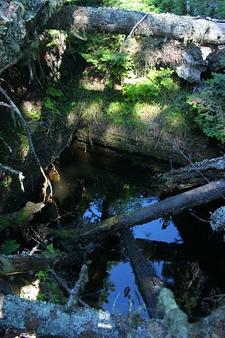 An Abandoned Mine Shaft